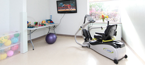 Image of Fitness Equipment